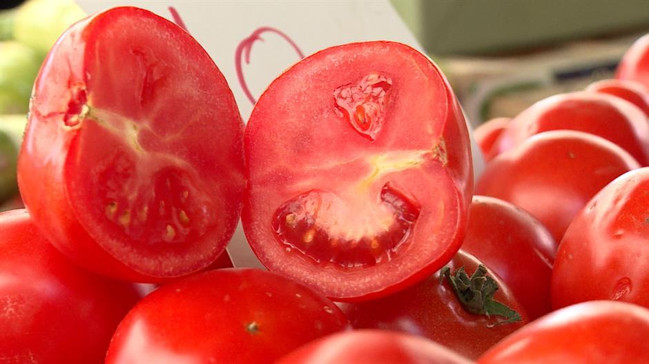 leskovacki_paradajz_izvoz